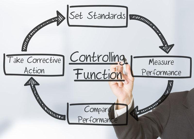Organizzazione e Performance